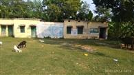 गांव में अस्पताल फिर भी नहीं होता मरीजों का इलाज