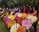 फूलों के बीच कांटे की टक्कर, NBRI में शुरू हुई दो दिवसीय गुलदाऊदी एवं कोलियस शो Lucknow News