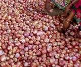 Onion Theft Case: मोहाली में 40 किलो प्याज चुरा ले गईं महिलाएं, CCTV में हुई कैद