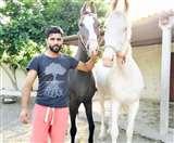 शिखर धवन ने रवींद्र जड़ेजा से किया साथ में घुड़सवारी करने का वादा, लेकिन रख दी ये शर्त