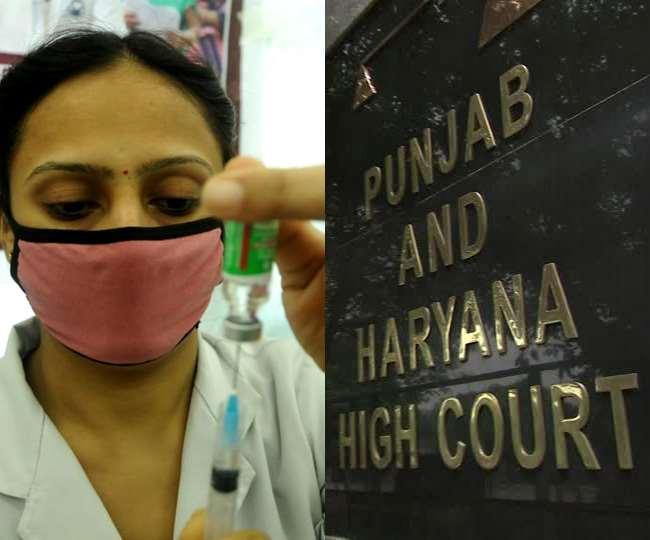 पंजाब एवं हरियाणा हाई कोर्ट व वैक्सीनेशन की फाइल फोटो।