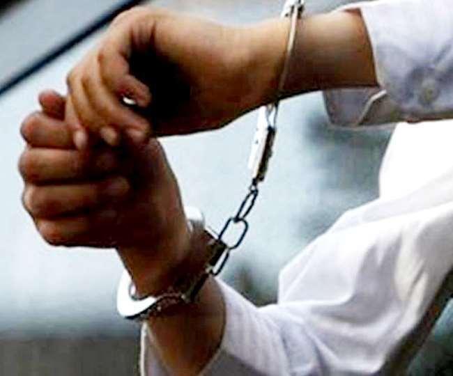 मध्यप्रदेश: पैंगोलिन के चमड़े के अवैध तस्करी मामले में दो गिरफ्तार