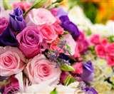 खुश्ाबू नहीं बल्कि फूल से महकेगी सेहत, रंग बिरंगे फूलों की दुनिया इस तरह संवार सकती है आपकी सेहत