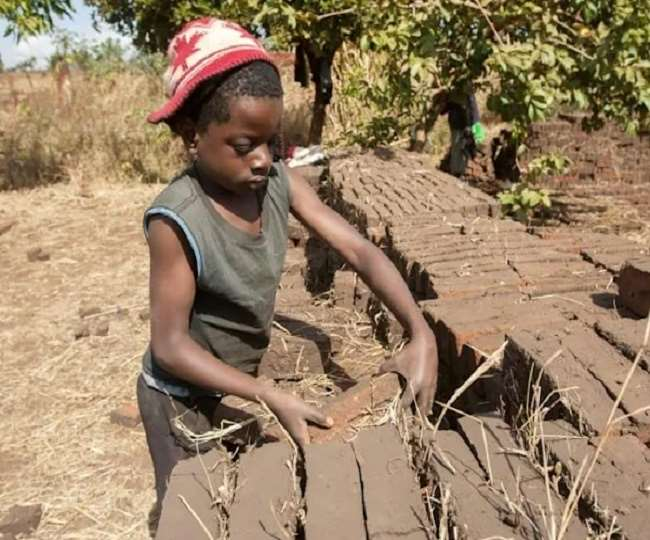 अफ्रीका में सबसे अधिक बाल श्रमिकों की संख्या वृद्धि हुई है।