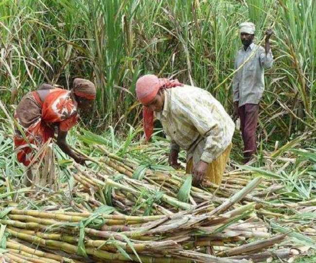 फसलों की खरीद भी न्यूनतम समर्थन मूल्य पर करनी चाहिए।