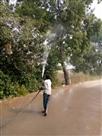 डंपिग साइट पर कराया पानी का छिड़काव, धुलवाए पेड़