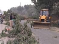 अधूरे हाईवे का निर्माण दोबारा शुरू, पेड़ काटने की मिली मंजूरी