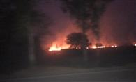सख्ती के बावजूद धान के अवशेषों में लगाई जा रही आग