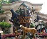 Lucknow Zoo में वन्यजीवों की रसोई को लाइव देख सकेंगे दर्शक Lucknow news