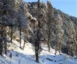 Uttarakhand Weather: उत्तराखंड में बारिश का दौर शुरू, केदारनाथ सहित ऊंची चोटियों में बर्फबारी