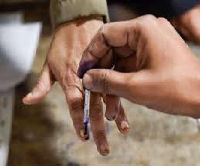 आंध्र प्रदेश में पंचायत चुनाव के दूसरे चरण के लिए मतदान जारी
