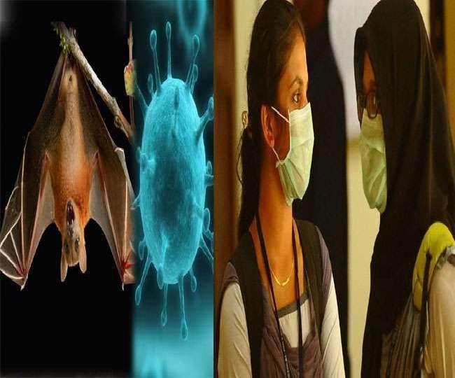 केरल में निपाह वायरस से जुड़े मामले पर अपडेट।(फोटो: दैनिक जागरण)