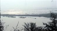 विशेषज्ञ तय करेगा, नजफगढ़ झील जल निकाय है या नहीं