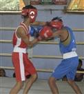 राज्य स्तरीय बॉक्सिंग में कटिहार, पटना और भागलपुर का दबदबा