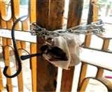 नहीं कोई यहां सुनने वाला, पुलिस प्रशासन की बेरुखी से कोमा में खोई जिंदगी Agra News