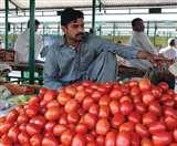 टमाटर की कीमतों से पाकिस्तान हुआ बेहाल, ईरान से मंगाने पर कर रहा विचार