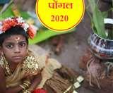 Pongal 2020 Significance & History: जानें क्या है पोंगल और इसका इतिहास!
