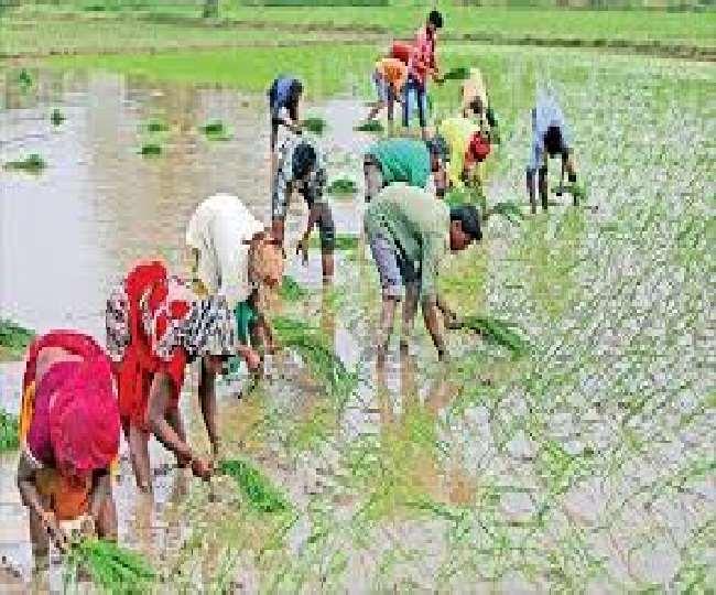 किसानों की आय बढ़ाने के लिए इस सरकार ने दिया कृषि यंत्र और 10 हजार रुपये की आर्थिक सहायता