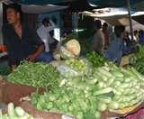 यहां तो क्षेत्रवार बदल जाते हैं सब्जियों के भाव, मुनाफाखोरी का चल रहा खेल Agra News