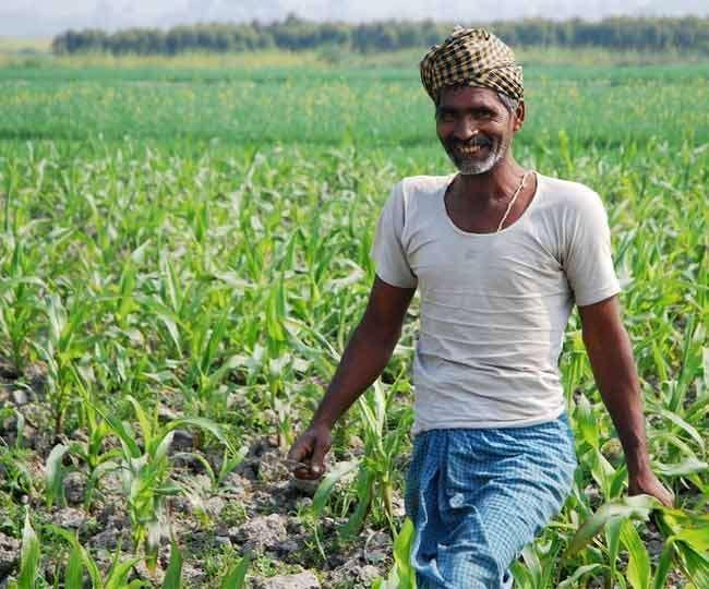 किसानों के लिए मोदी सरकार का बड़ा ऐलान।(फोटो: प्रतीकात्मक)