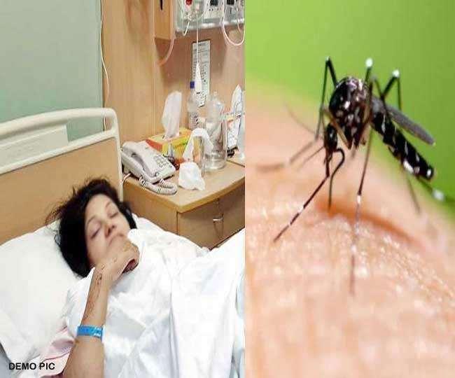Delhi Dengue News: दिल्ली में कोरोना वायरस से कुछ राहत मिली तो डेंगू बढ़ा डेंगू का खतरा