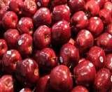 नेपाल से सटे भारतीय क्षेत्र में भारतीय देश के सेब गायब, जानें-क्या है रहस्य Gorakhpur News