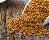 Fenugreek Seeds Benefits: लंबे बालों से लेकर साफ त्वचा तक, जानें मेथी दाने के 5 फायदे