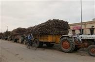 बैगास भीगने से चीनी मिल 24 घंटे से बंद
