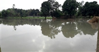 नहर से बहे पानी से फसल बर्बाद, किसानों ने किया प्रदर्शन