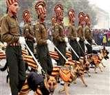 अब सेना के खोजी कुत्ते खंगालेंगे नशे की खेप, फिलहाल छह प्रशिक्षित कुत्तों को किया जा चुका है शामिल