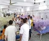 24 घंटे के अंदर मिले डेंगू के 177 नए मरीज, पहली मौत से दहशत में शहर- MLA भी चपेट में Patna News