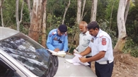 ट्रैफिक पुलिस ने दर्जनभर काटे चालान