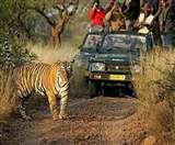दुधवा में जंगल सफारी से पहले भरना होगा बांड, ये है नई व्यवस्था Lakhimpur News