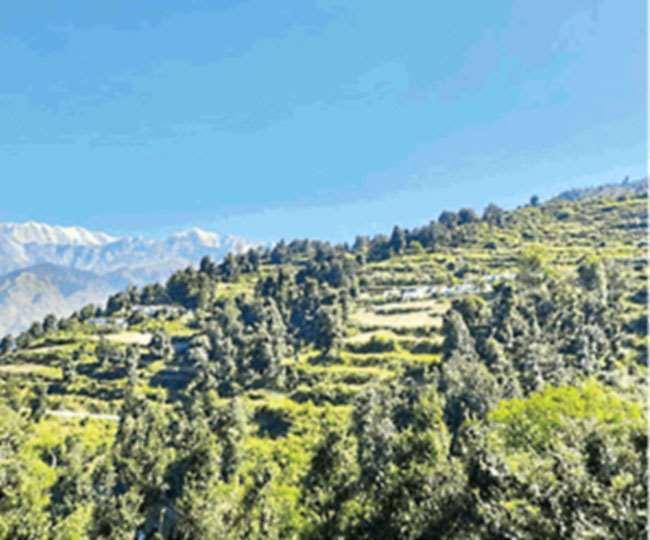 चमोली का घेस गांव, आर्थिकी को सुदृढ़ कर पेश की है मिसाल। सौ. घेस गांव प्रधान