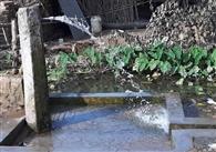 नप की अनदेखी से प्रतिदिन बह रहा लाखों लीटर पानी