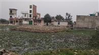 तालाब में बसा दी बस्ती, 260 घरों पर संकट
