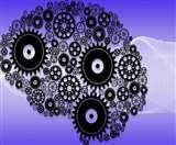 यूनिक नहीं है इंसान के मस्तिष्क का पैटर्न, वैज्ञानिकों ने वानरों के दिमाग से तुलना के बाद खोला राज