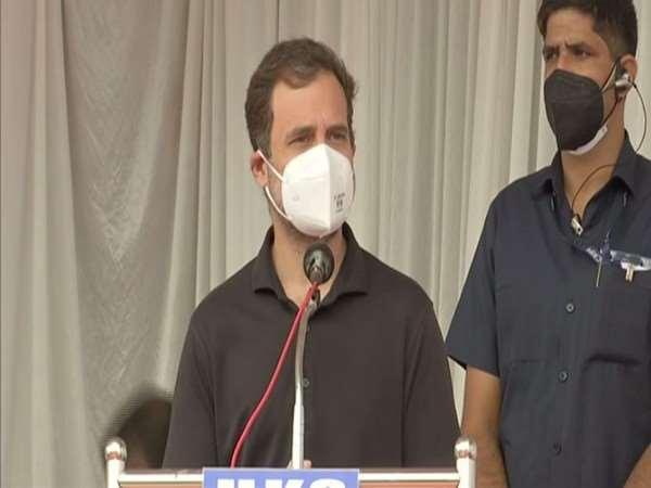 राहुल गांधी केरल के वायनाड में तीन दिवसीय दौरे पर महात्मा गांधी की प्रतिमा का अनावरण