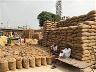 प्रदेश के नेता उपचुनाव में व्यस्त, मंडियों हांफ रहे किसान