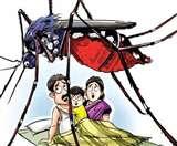 दून में 54 और मरीजों में डेंगू की पुष्टि, हरिद्वार में बुखार से एक की मौत