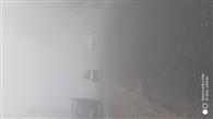 धुंध की चादर में लिपटा शहर, ठिठुरे लोग