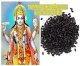 Shattila Ekadashi Date 2020: आज षटतिला एकादशी पर इस मुहूर्त में ऐसे करें भगवान विष्णु की पूजा, तिल है जरूरी