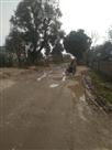 ग्रामीण सड़कों की हालत जर्जर, पैदल चलना दूभर