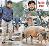 चिडिय़ाघर से कम नहीं है अस्पताल, राजनीति का अखाड़ा बन गया कॉलेज Kanpur News