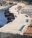 सिबली-तलवाड़ा जट्टा पैंटून पुल जनता को समर्पित, 70 गांवों को राहत