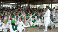 भारतीय किसान यूनियन लक्खोवाल ने दाना मंडी में दिया धरना
