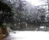 हिमाचल में बर्फबारी ने बदला मौसम का मिजाज, बढ़ने लगी ठंड