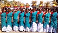 आदिवासियों ने परंपरागत तरीके से मनाया नवाय पर्व