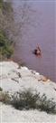 चिनाब में गिरा लोड कैरियर वाहन, तीनों लोगों ने तैर कर बचाई जान