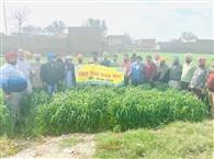 मिट्टी की सेहत बरकरार रखनी है तो किसान करें सिफारिश की दवाई व खादों का इस्तेमाल